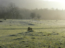 [frosty field at Witherslack ]